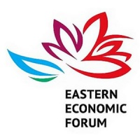 "Grigory Vygon took part in the ""Smart Energy: Balance of Needs and Opportunities"" session of the Eastern Economic Forum 2017"